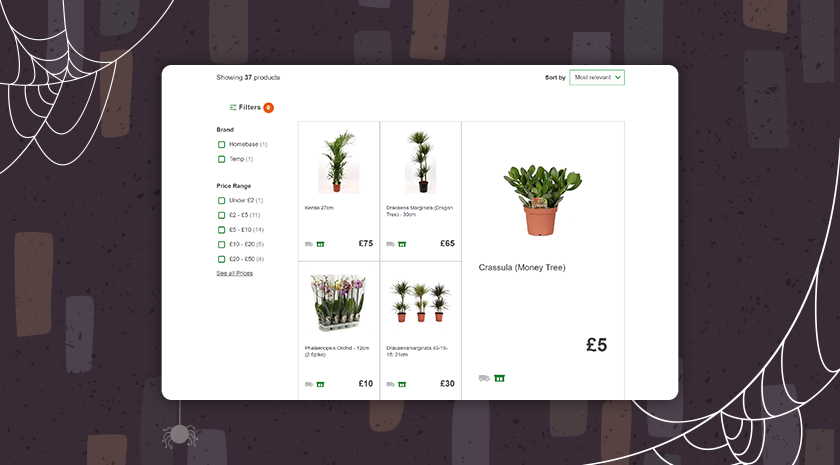 This online shop only features two filters (brand and price) for it's houseplant category, making it difficult to narrow down results.